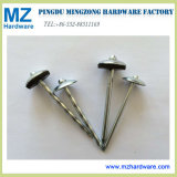 Electro Galvanized Umbrella Head Smooth Twisted Roofing Nail with EPDM Washer