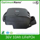 24V 10ah LiFePO4 Battery for E-Bike Frog Case