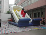 Customized Good Quality Inflatable Slide (SL-001)