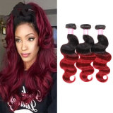 Brazilian Human Hair Extension Ombre Body Wave Virgin Hair Deal with Mixed Colors