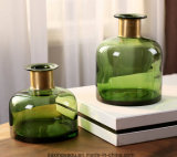 Glass Flower Vase with Golden Buckle for Home Decoration (green)