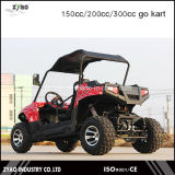 Cheap Racing Go Kart for Sale 200cc Water Cooled Zyao