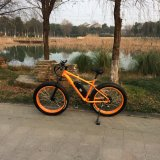500W Big Power Fat Tire Electric Bicycle