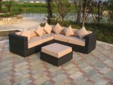 Garden Sofa / Outdoor / Rattan / Wicker Furniture (FT-S1003)
