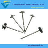 Umbrella Head Roofing Nails (8G-13G)