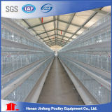China Automatic Poultry Layer Cage