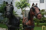 Lemico Made Horse Harness for 2horse