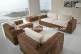 Rattan Furniture/ Outdoor Chair/Rattan Chair (DH-9620)