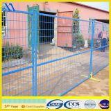 Welded Wire Mesh Fencing (XA-MF003)