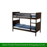 Bunk Bed for Students Using