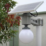 New Outdoor Lighting Product High Brightness Solar Power Garden Lamp