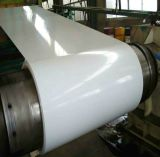 Color Coated Galvanized Steel in Coil, in Sheet