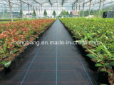 3.66m*100m Weed Control Material for Agriculture