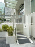 CE Certification Accessible Disabled Elevator