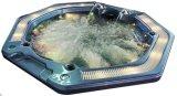 Multicolor 7 Persons Octagonal Shape Whirlpool Bathtub Swim SPA Hot Tub