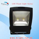 100W 2 Chips LED Flood Lights