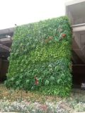 High Quality Artificial Plants and Flowers of Green Wall Gu20170219083316