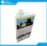 Professional Big Qantity Colour Leaflet Printer