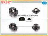 Mounting Supports for Ball Screw with Fk Series Types