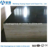 Black Film Faced Plywood Offering with Best Price