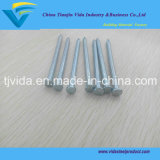 Made in China Galvanized Concrete Nail/Hardened Steel Concrete