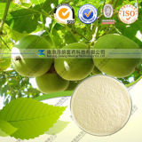 Factory Direct Supply Natural Momordica Grosvenori Extract