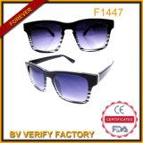 Fashion Custom Sunglasses Logo Designer for Men