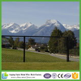 Galvanized & PVC Coated Chain Link Fence (professional manufacturer)