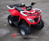 New 110cc ATV with Hydraulic Disc