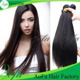Best Price Straight Brazilian Virgin Hair Weaving