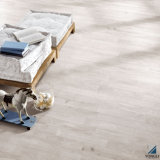 New Design Wood Flooring and Wall Tiles