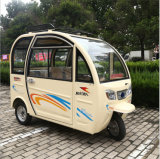 Wholesale Environmentally Friendly Baggage Holder Tricycle