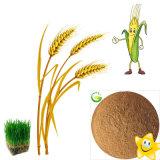 Qfg High Quality Fulvic Acid Fertilizer Fa