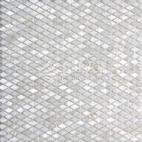 Iridescent River Freshwater Shell Mother of Pearl Stone Mosaic Tile