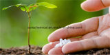 Water Soluble Fertilizer 0-0-50 Sop 50% Granular Potassium Sulphate