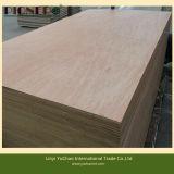 BB/CC Grade Bintangor Plywood for Furniture
