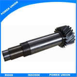 Stainless Steel Reducer Worm Gear for Indutry Machinery