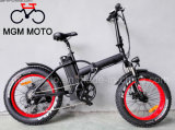 Fat Tire 20inch Folding Mountain Electric Bike