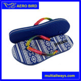 New Product Colorful PE Slipper Shoe for Ladies