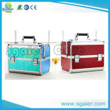 Export Beauty Colorful Personalized Aluminum Nail Makeup Case, Cosmetic Case