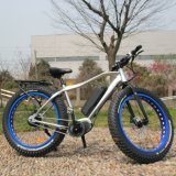 26*4.0 Inch Fat Tire MID Drive Electric Bicycle