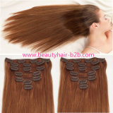 Wholesale Top Pretty Clip in Hair Extension