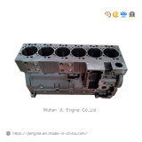 6lt Cylinder Block 4946152 5260558 for 8.9L Engine