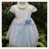 Chiffon Lace Taffeta Embroidered Blue Flower Girls Dress