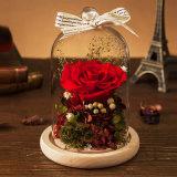 Fashion Natural Flower for Wedding Decoration