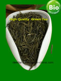Fresh Green Tea with Long History