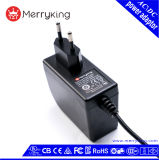 Over Current Protection 30V 0.8A AC DC Power Supply Adapter