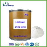 Lactobacillus Acidophilus Probiotics Acidifying Agent Fodder Livestock Premix