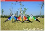 Stunt Fy20160221-105 Kite