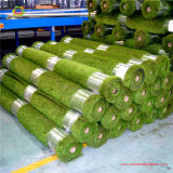 Newly Exported Small Roll Packing Grass with Pallets for Garden